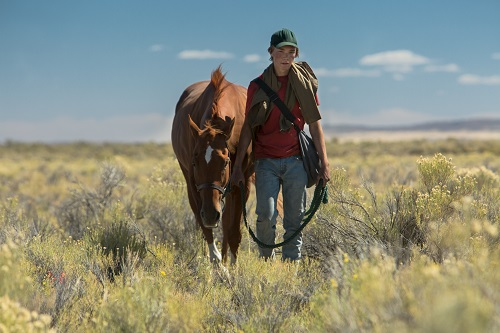 Charlie Plummer in Lean On Pete, photo by Scott Patrick Green, courtesy of A24.