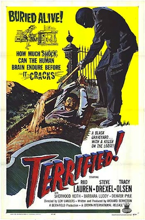 Terrified One-Sheet