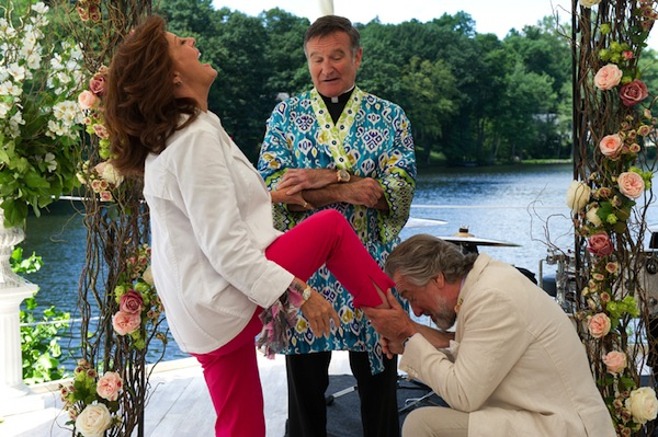 Robert De Niro, Susan Sarandon, and Robin Williams in The Big Wedding