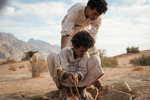 Theeb. All rights reserved.