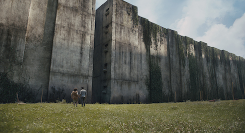 THE MAZE RUNNER A group of boys known as the Gladers are trapped inside a mysterious and massive maze. Photo Credit: Ben Rothstein TM and © 2014 Twentieth Century Fox Film Corporation. All Rights Reserved. Not for sale or duplication.