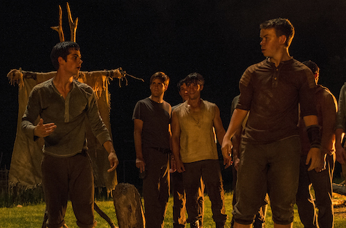 THE MAZE RUNNER Thomas (Dylan O'Brien, left) and Gally (Will Poulter, far right) devise an escape plan. Photo Credit: Ben Rothstein TM and © 2014 Twentieth Century Fox Film Corporation. All Rights Reserved. Not for sale or duplication.