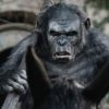 Toby Kebbell in Dawn of the Planet of the Apes (2014)