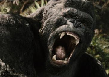 King Kong 2005 1 Filmfracture