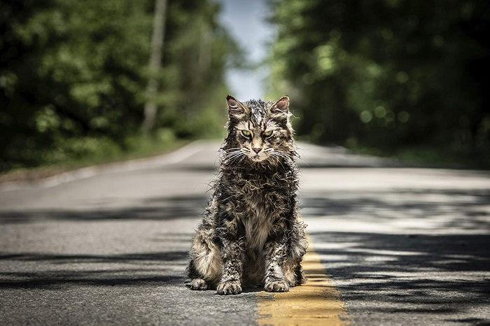'Church' in PET SEMATARY, photo credit Kerry Hayes and courtesy Paramount Pictures 2018.