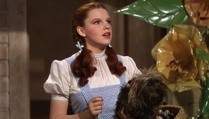 Judy Garland and Toto (Terry) in The Wizard of Oz (1939)
